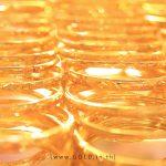วิเคราะห์ราคาทองคำ 25 พ.ย.63(ภาคเช้า) by InterGold